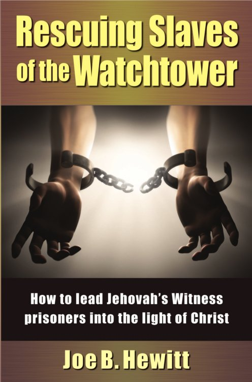 false witness book review
