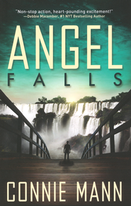Angel Falls book cover