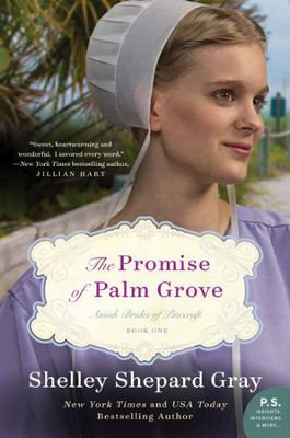 Promise of Palm Grove book cover
