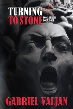Turning To Stone book cover