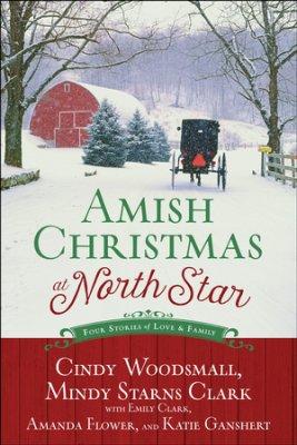 Amish Christmas at North Star book cover