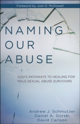 Naming Our Abuse book cover