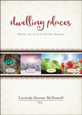 Dwelling Places book cover