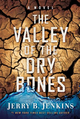 Valley of Dry Bones book cover